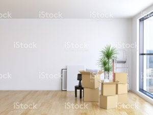 An otherwise empty room has boxes and a plant in the corner.