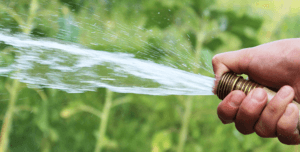 A picture of a hose spraying out water.