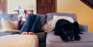 A photo of a dog laying on a couch beside someone reading a magazine.