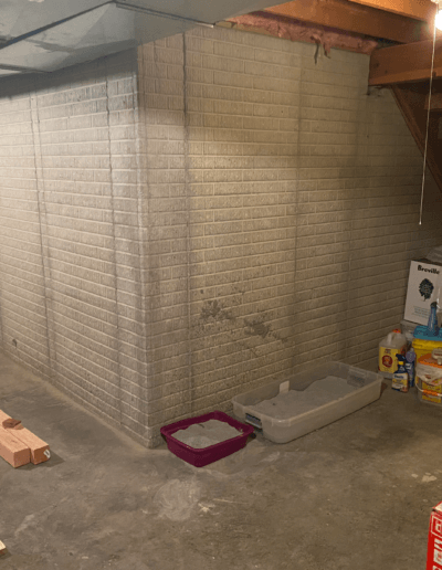 corner of gray brick walls and concrete floors with litterboxes